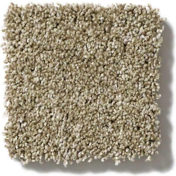 Biscotti Carpet