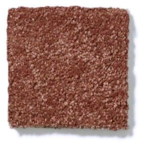 Arabian Spice Carpeting