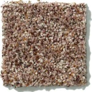 Bran Carpet