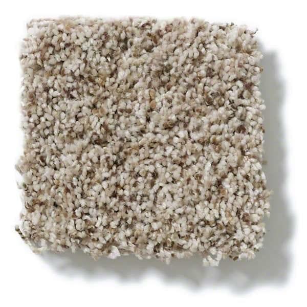 Camelback Carpet