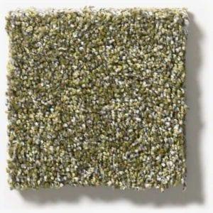 Chameleon Carpet