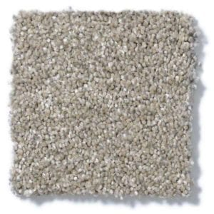 Cork Board Carpet