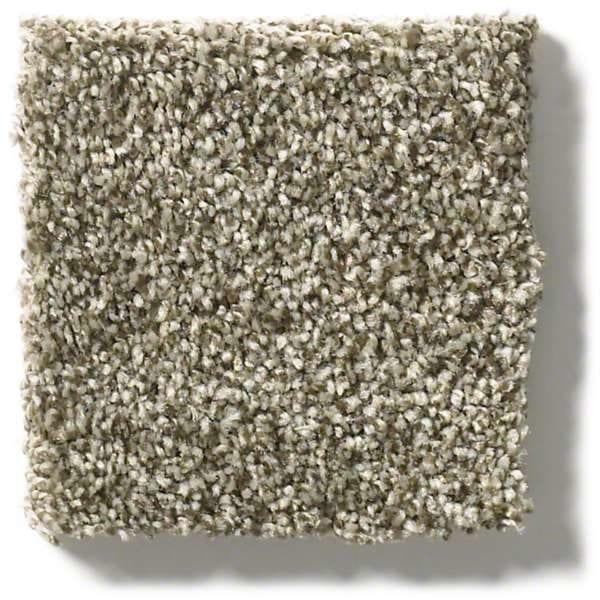 Dreamy Taupe Carpet