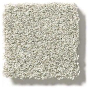 Fog Carpet