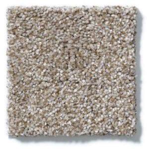 Granola Carpet
