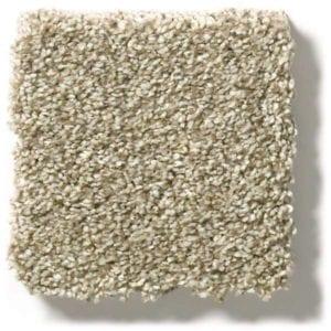 Khaki Carpet