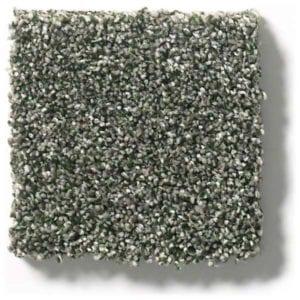 Lush Carpet