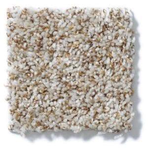 New Shell Carpet