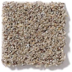 Sandy Stroll Carpeting