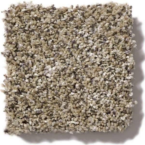 Sea Shell Carpet