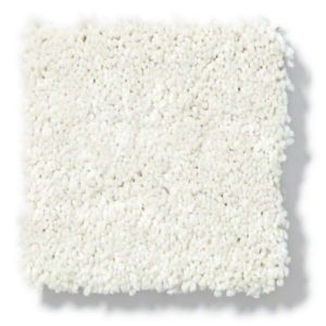 Shell Carpet