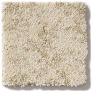 Sun Bleached Carpet