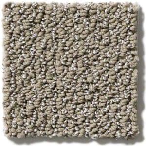 Taupe Carpet