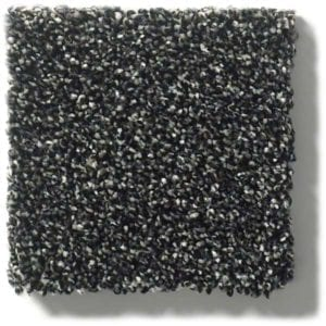 Truffle Carpet