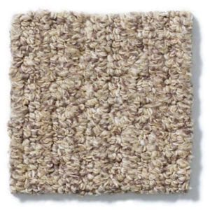 Taupe Carpeting
